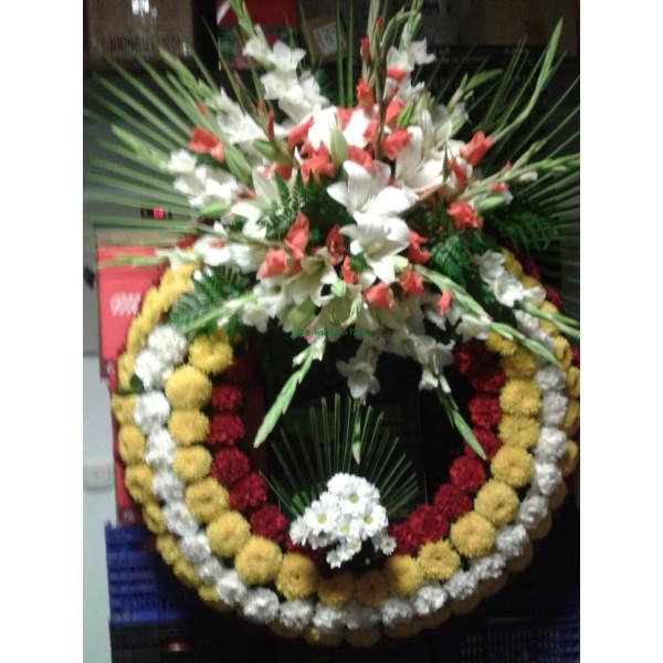 Corona Tradicional 001
